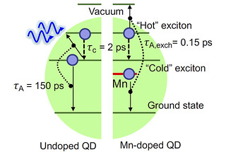 Doping a quantum dot with magnesium (right half of graphic) speeds the capture of energy from a hot electron to 0.15 picoseconds, outpacing losses to phonons in the crystal lattice.