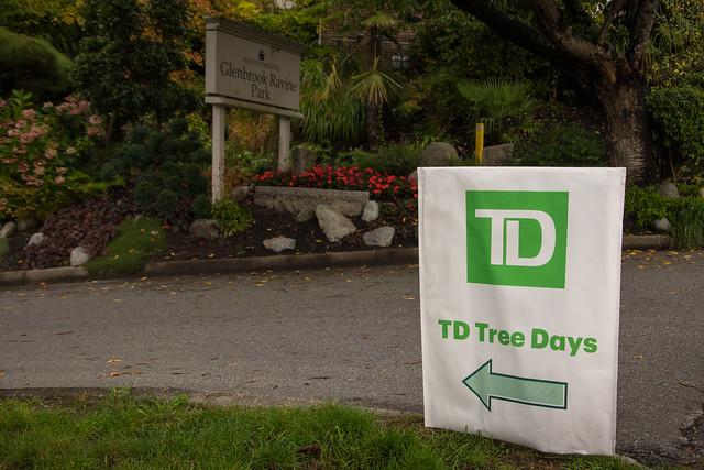 TD Tree Days