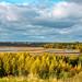 Autumn Syksy Helsinki