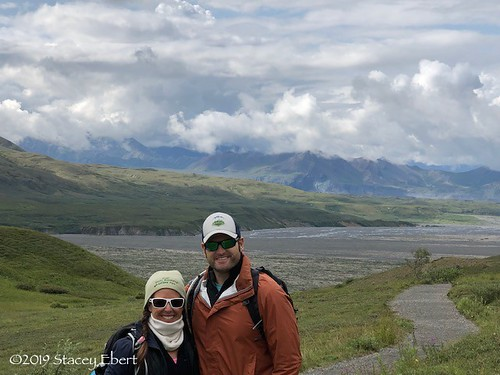 Denali National Park. From Through the Eyes of an Educator: Alaska, the Last Frontier