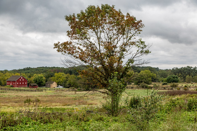Gettysburg Fields