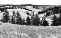 A Minimalistic A Wind Cave Landscape (Black & White, Wind Cave National Park)