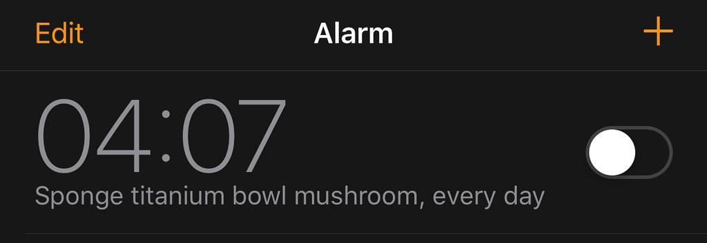 04:07 - Sponge titanium bowl mushroom, every day