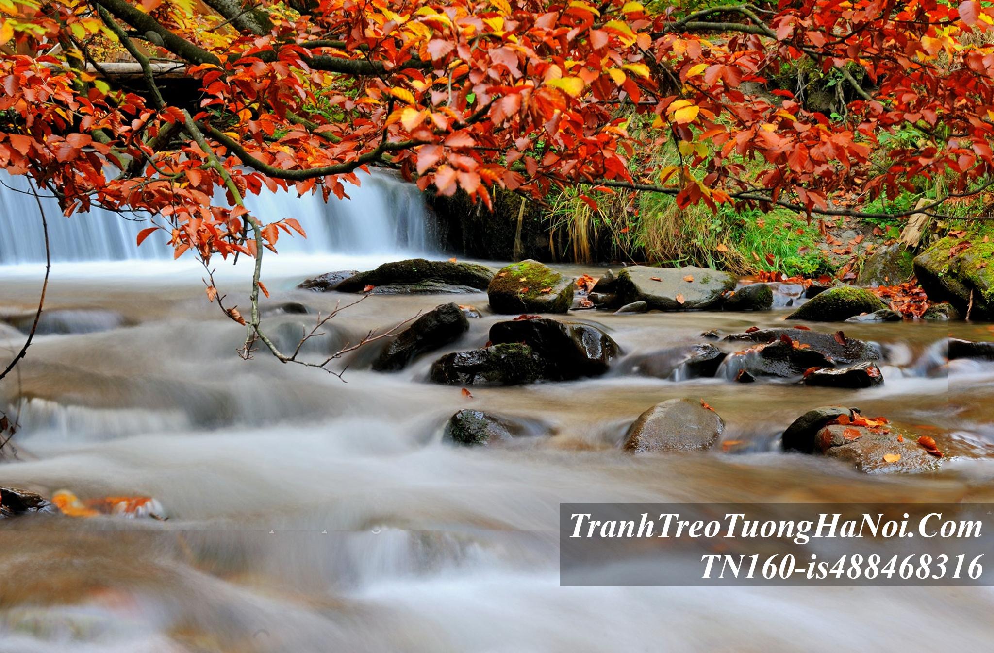 Tranh dong thac nuoc thu cuc dep amia TN160-is488468316