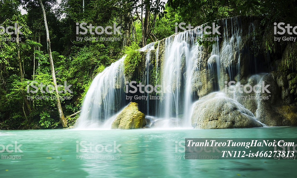 Tranh thac nuoc chay trong rung cay thien nhien AmiA TN112-is466273813