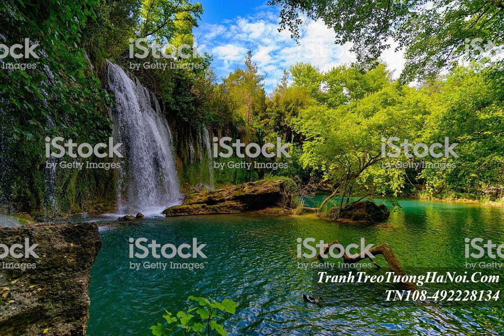 Thac nuoc dep trong rung cay xanh amia TN108-492228134