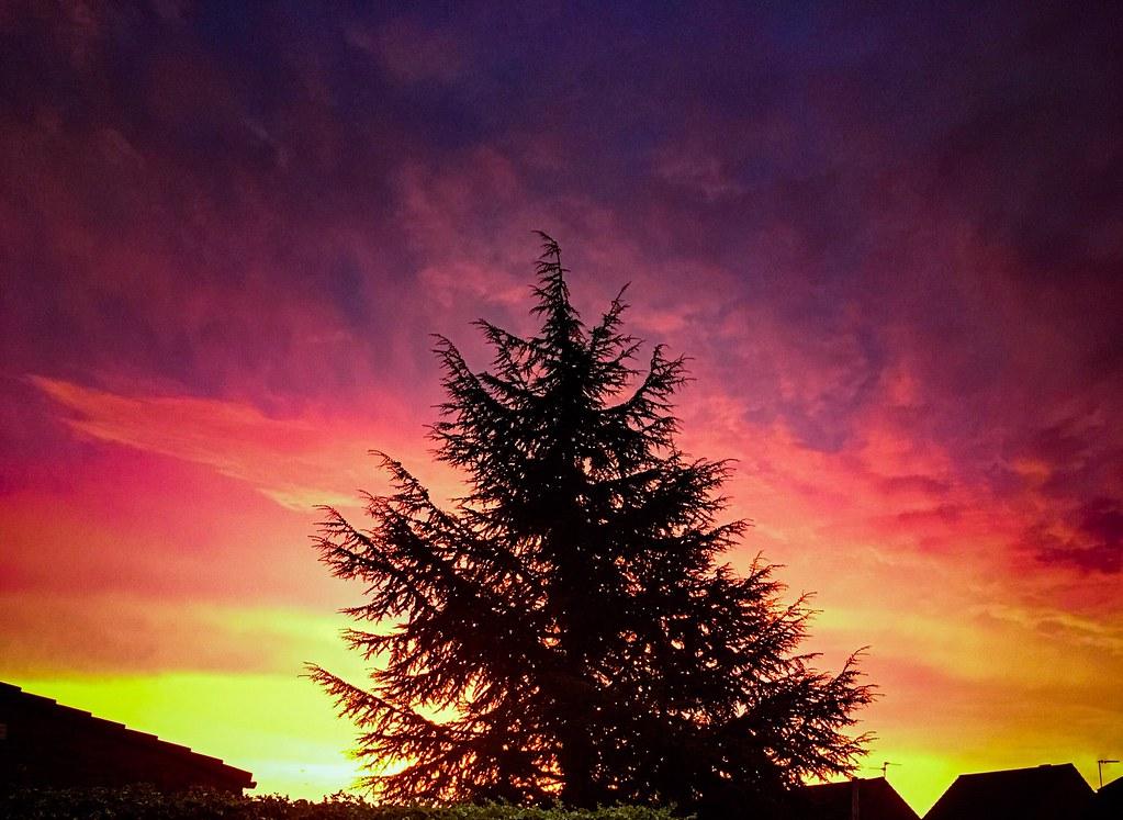 Hertfordshire sunrise