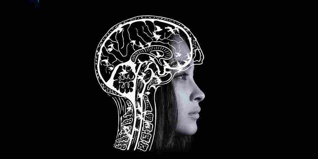 Un superordinateur simule 77 000 neurones en temps réel