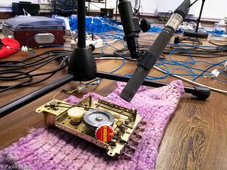 Recording Systema naturae
