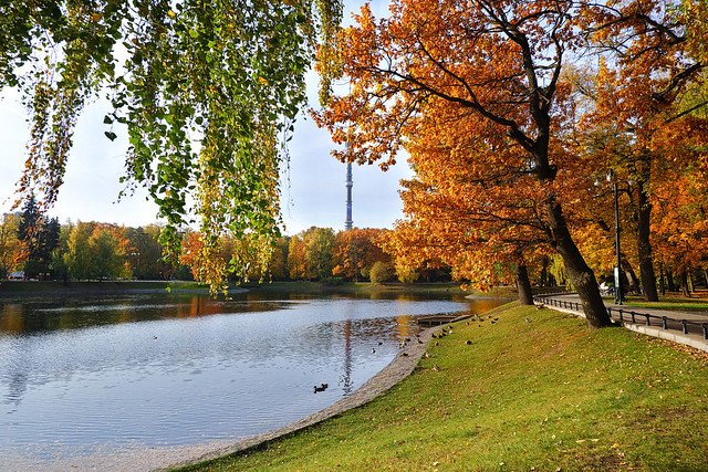 View of the park pond and Ostankino television tower