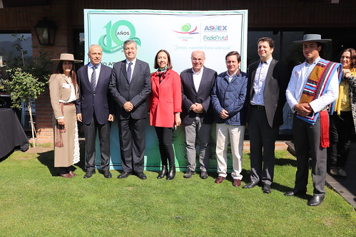 Celebración 10 Años Comité del Kiwi de Chile