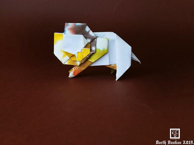 Second Life Young Lion - Barth Dunkan.(Photos Diagram)
