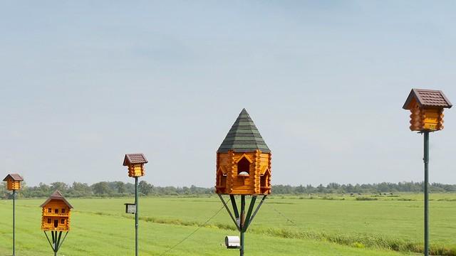 Upperclass birdhouses