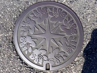 Yonago Tottori, manhole cover 3 (鳥取県米子市のマンホール3)