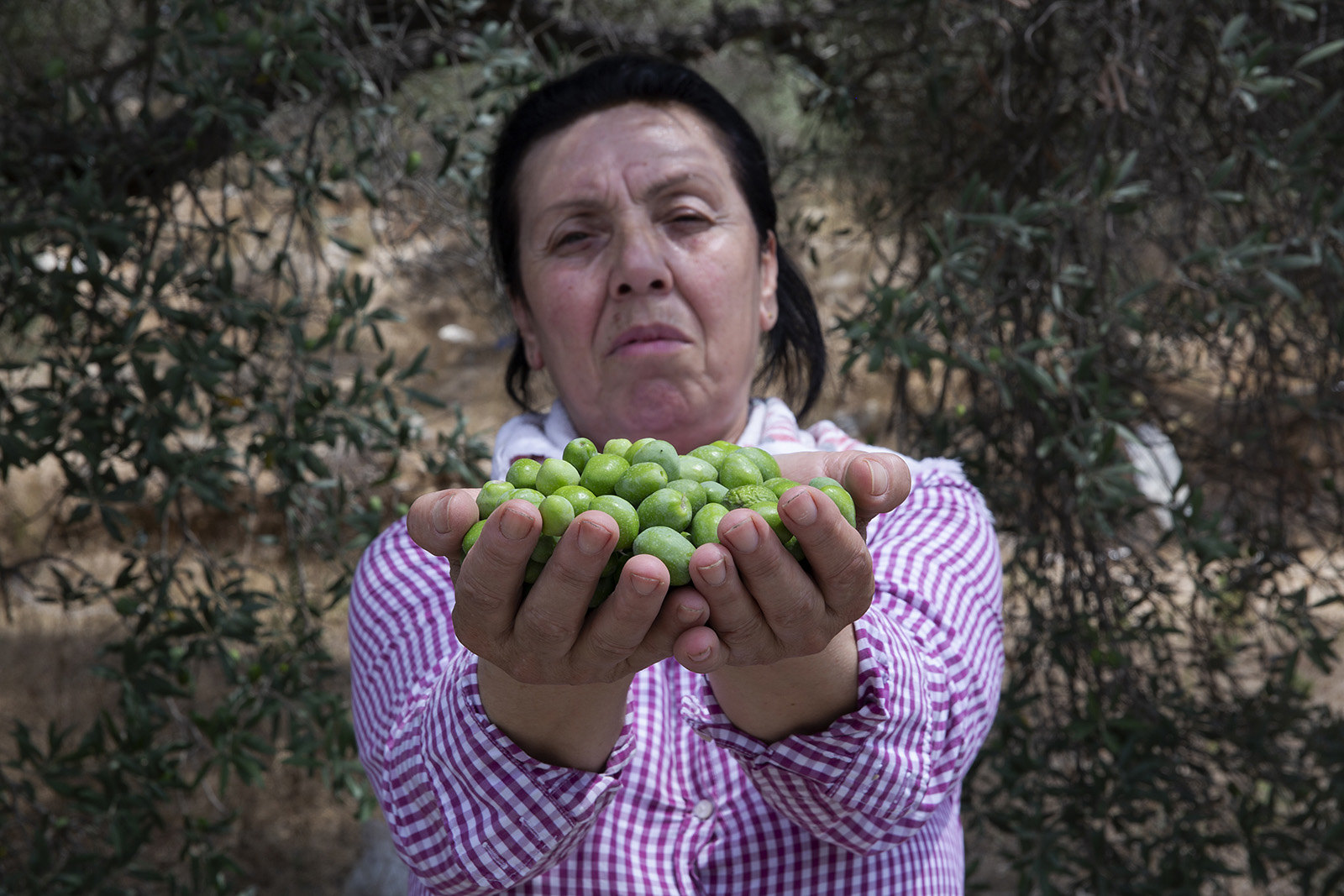 Syrian women food producers