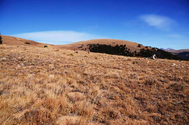 Fall foliage hike at Ptarmigan Peak Trail, Colorado (82)