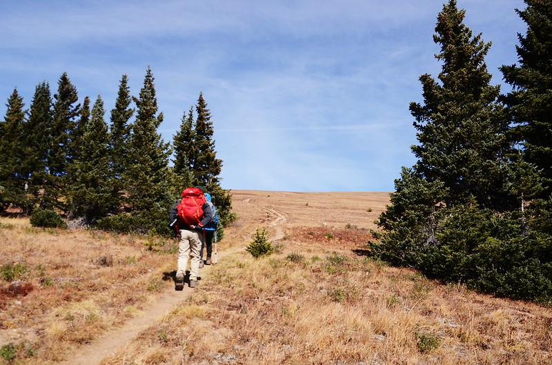 Fall foliage hike at Ptarmigan Peak Trail, Colorado (72)