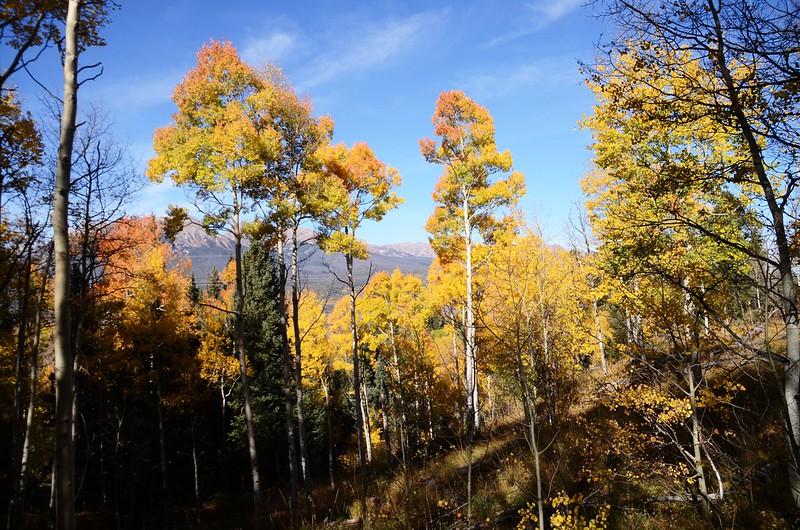 Fall foliage hike at Ptarmigan Peak Trail, Colorado (29)