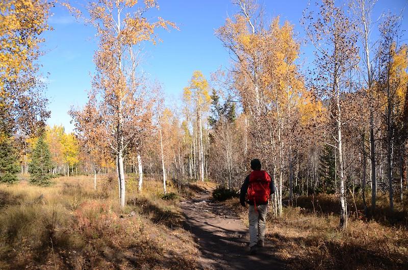 Fall foliage hike at Ptarmigan Peak Trail, Colorado (26)