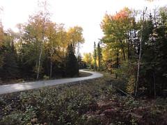 Rec Trail fall curves