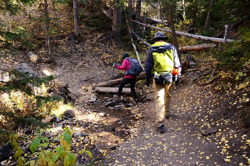 Ptarmigan Peak Trail, Colorado (50)