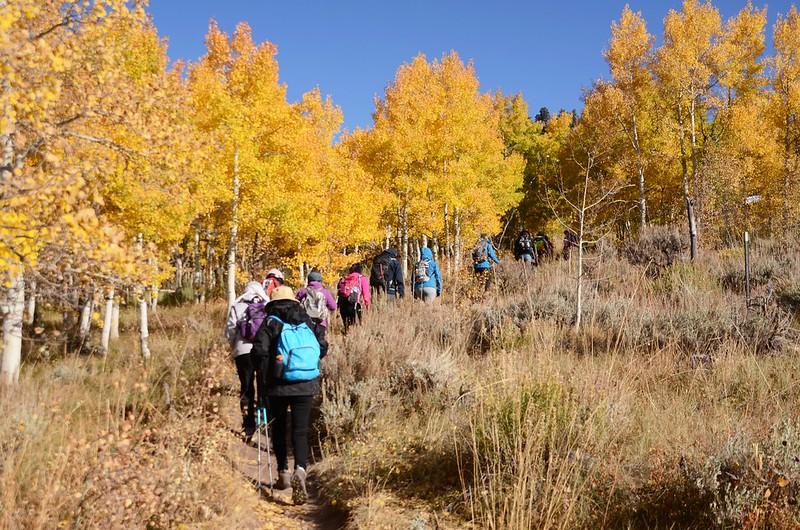 Ptarmigan Peak Trail, Colorado (3)
