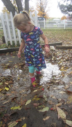 puddle walking