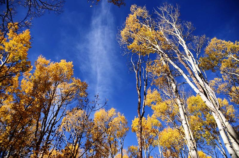 Fall foliage hike at Ptarmigan Peak Trail, Colorado (39)