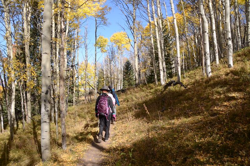 Fall foliage hike at Ptarmigan Peak Trail, Colorado (28)