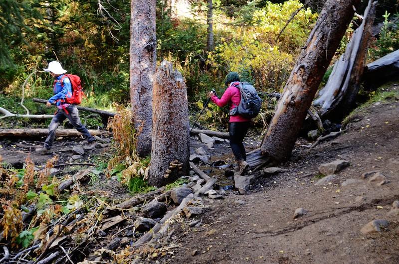 Fall foliage hike at Ptarmigan Peak Trail, Colorado (53)