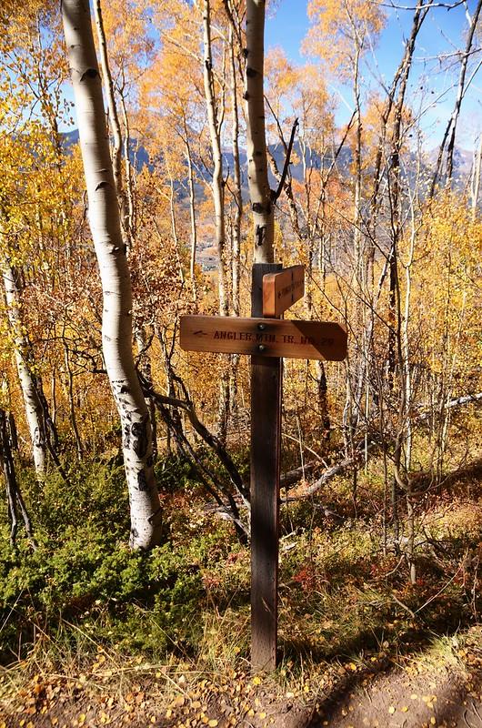 Ptarmigan Peak Trail & Angler Trail junction