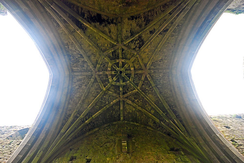 A vaulted ceiling in the ruins of Cashel Hore Abbey in Ireland