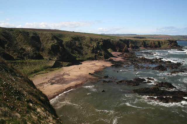 The coast at Eyemouth