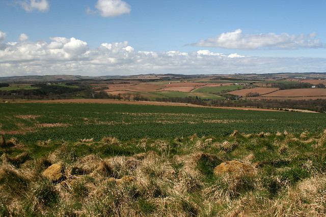 View inland near Eyemouth