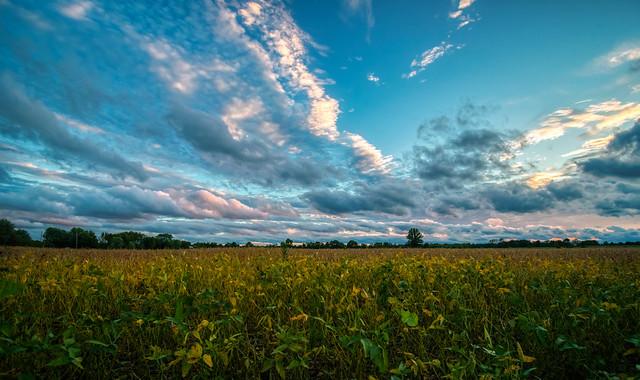 October Sky (1)