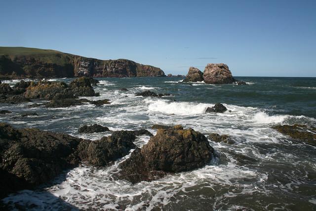 The coast at St Abbs