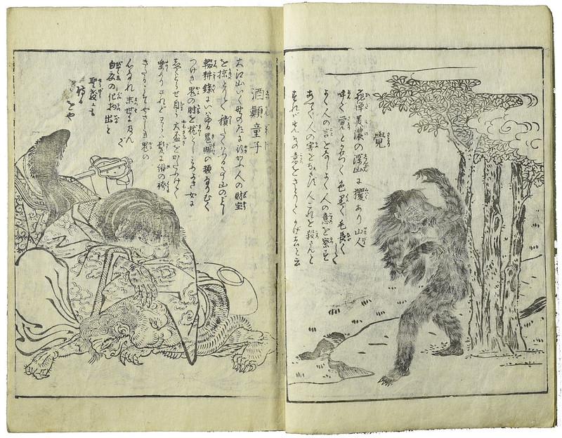 「酒顚童子」(しゅてんどうじ)(酒呑童子)と「覚」(さとり), 鳥山石燕『今昔画図続百鬼』より