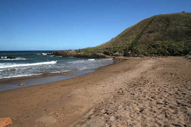 The beach at Coldingham Bay