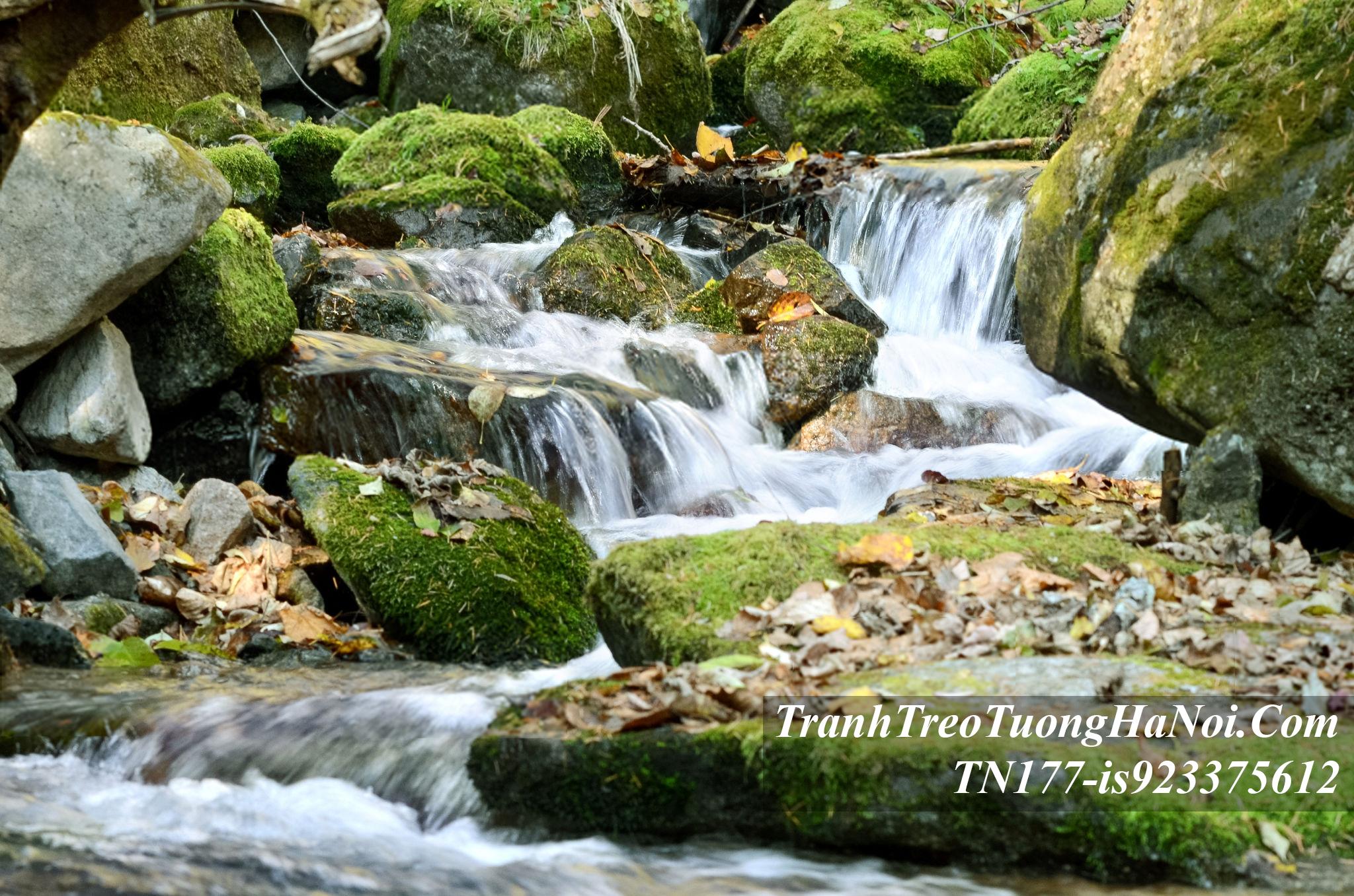 Tranh thac nuoc khe suoi amia TN177-is923375612