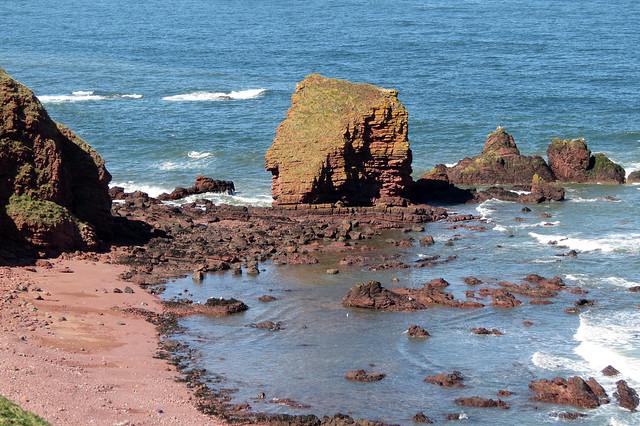 The coast near Eyemouth