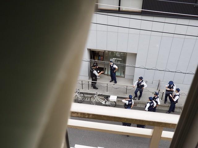 2019.10.5-6 お犬様診察