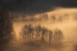 Autumn Ghosts II