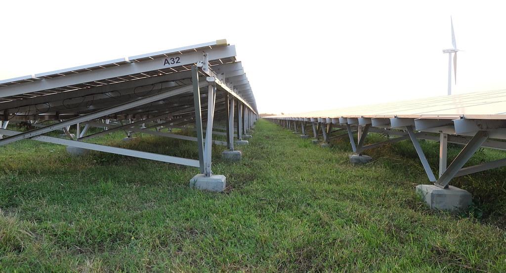 彰濱太陽光電場的運維還包括清洗與除草。攝影:陳文姿。
