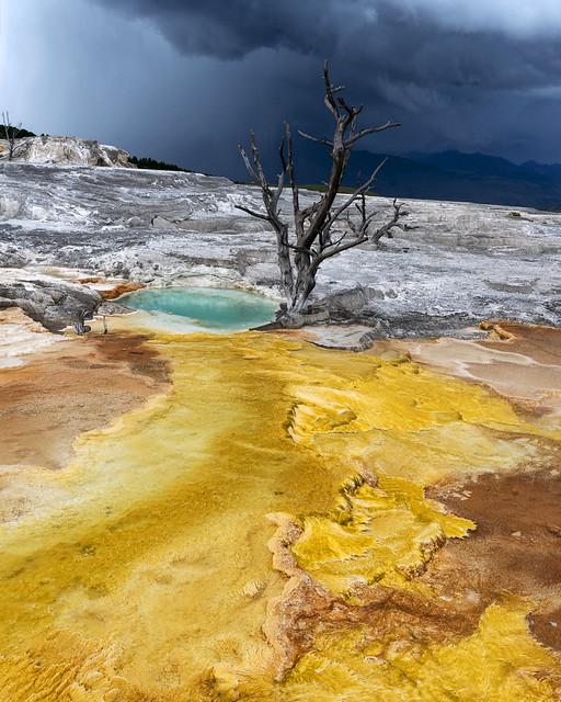 Yellowstone_Mammoth_Hot_Springs_IMGP8571_v4_2