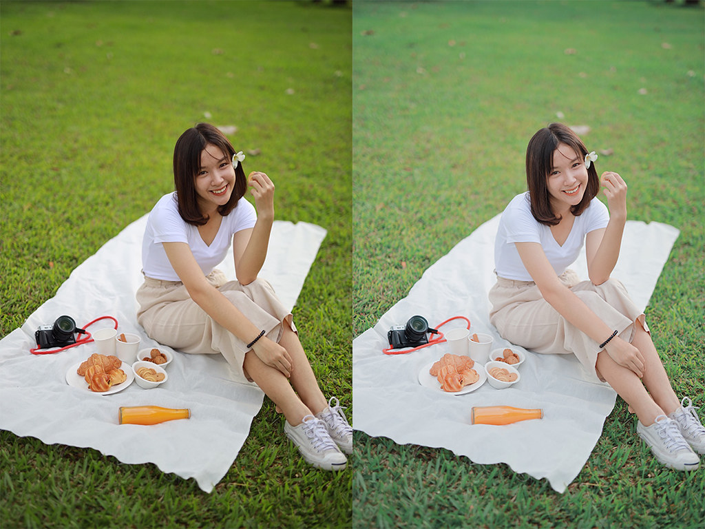 vsco-picnic-tone-01