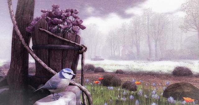 Wishing Bird
