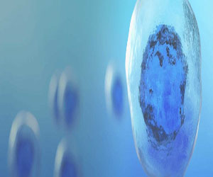 Stem Cells: What They are and What They Do