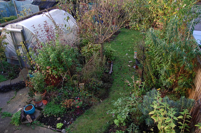 Looking Down on the Back Garden - October 2019