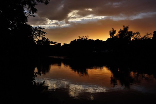 sunset pond water goldenhour reflection clouds silhouette nature shakujiipark 石神井公園