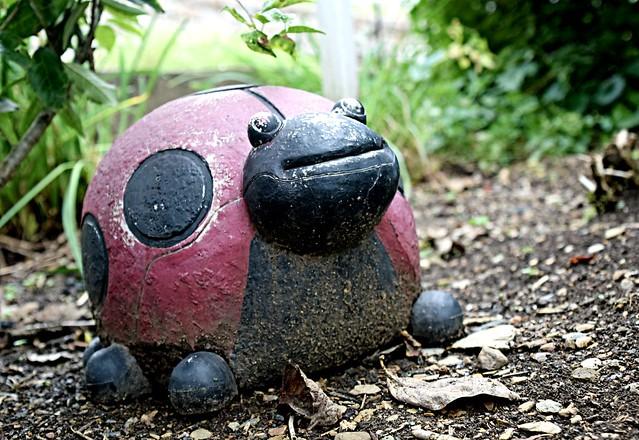 Mud on the Ladybug